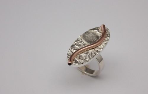 ring, haarlok en vingerafdruk 1